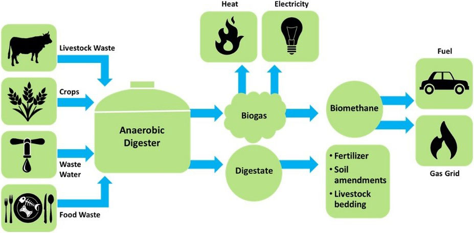 Fact Sheet - Biogas: Converting Waste to Energy | White