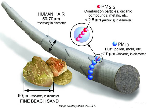 Particulate Matter in relation to humain hair (courtesy: EPA)